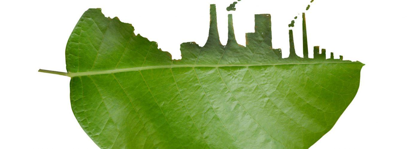 Técnico en Evaluación del Impacto Ambiental