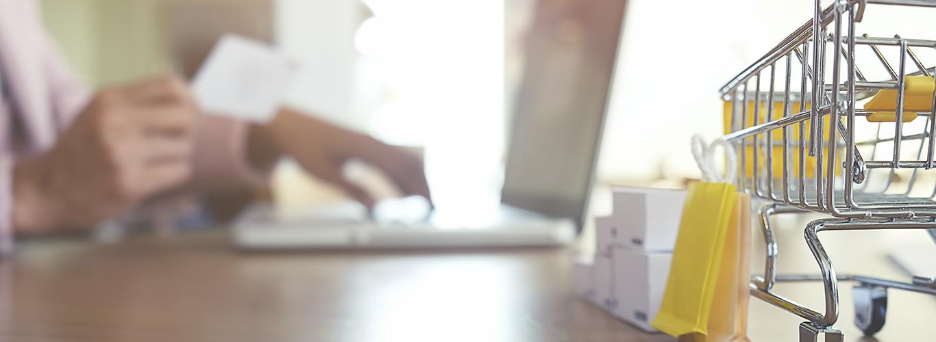 Técnico en desarrollo de negocios online (E-Business)